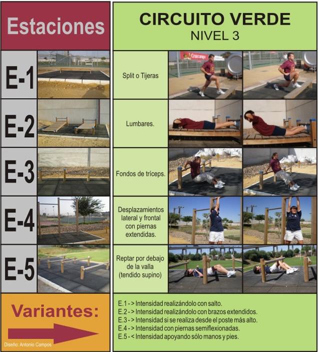 Ejercicios En Circuito Y Coordinacion : Entrenamiento circuito natural